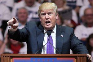 DonaldTrump_wiki
